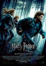 David Yates - HARRY POTTER E I DONI DELLA MORTE - PARTE I