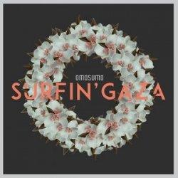 Surfin` Gaza