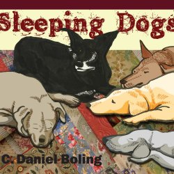 Sleeping Dogs<small></small>