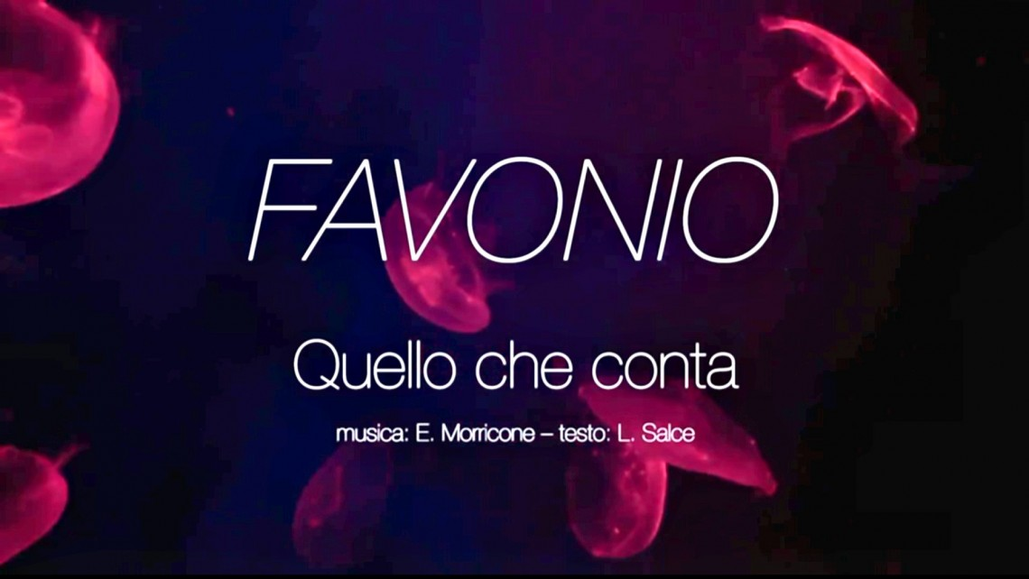FAVONIO, SU YOUTUBE